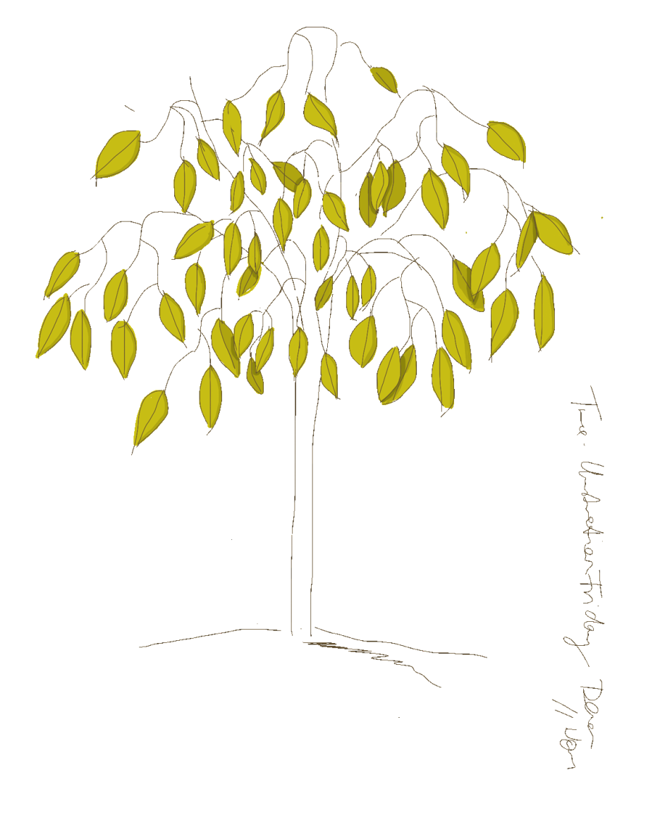 simple line drawing of a tree
