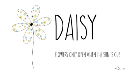 Daisy, Flowers only when the sun is out